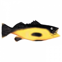Black/Yellow Rubber Fish